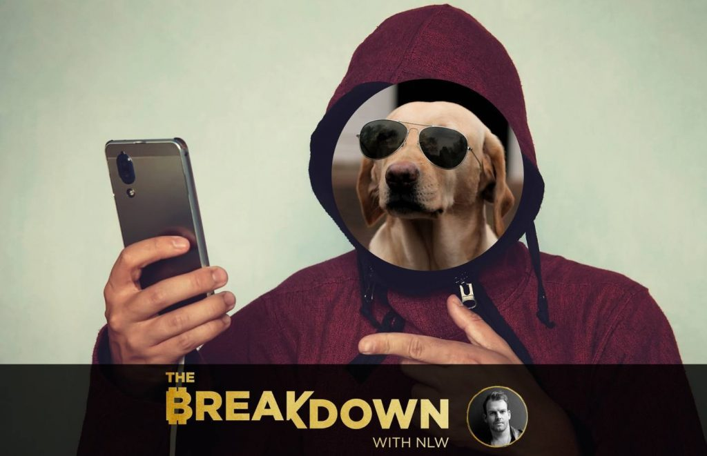 Nobody Knows You're a Dog on Social Media, Feat. The Crypto Dog - CoinDesk