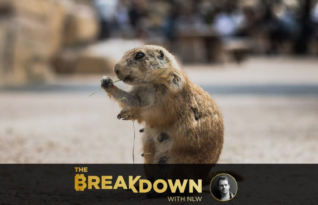 Welcome to the Groundhog Day Economy (PS, It Sucks) - CoinDesk