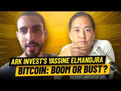 r/Bitcoin - Great interview on the value proposition of BTC