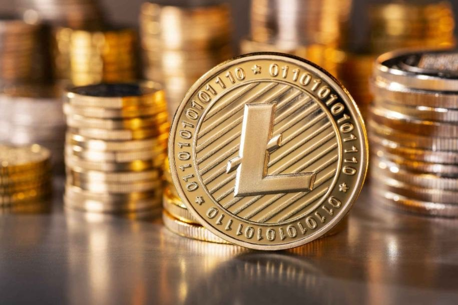 Bitpay Adds Support For Litecoin And Newegg Becomes The First Merchant To Accept LTC Through Bitpay : litecoin